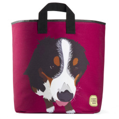 bernese-mountain-dog-grocery