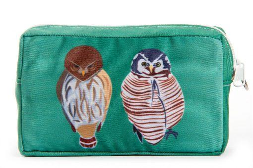 owls-raptors-aqua